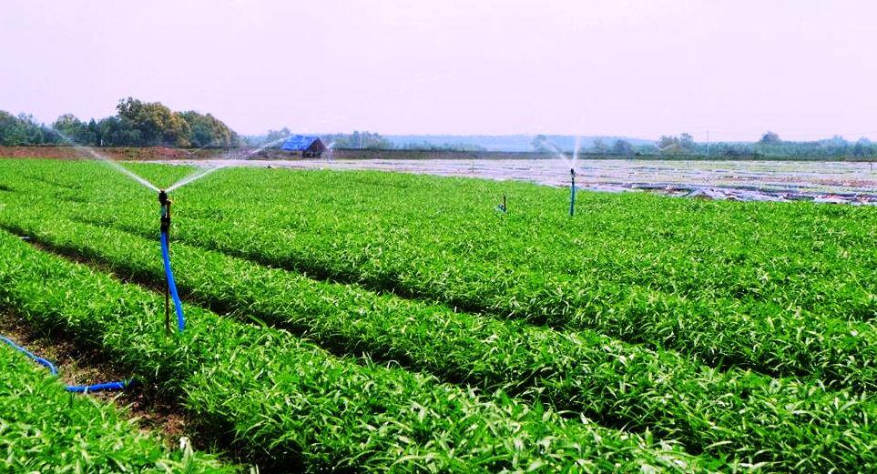 """Cách mạng 4.0: Cơ hội """"Vàng"""" cho nông nghiệp Việt Nam"""