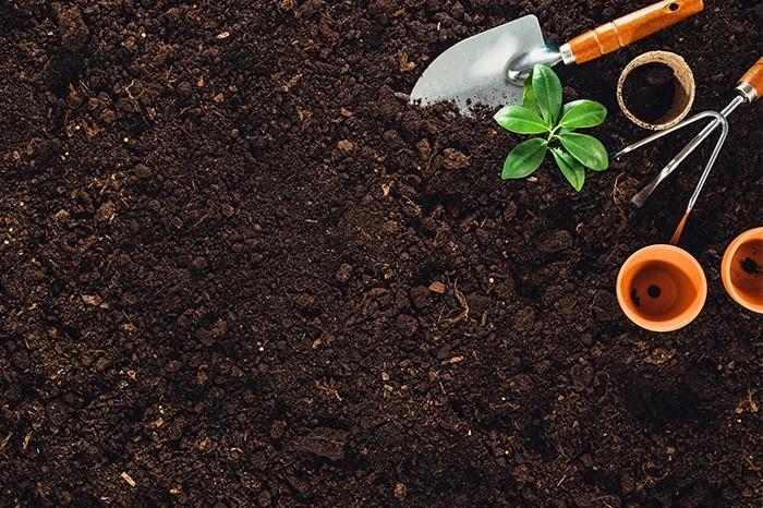 Việt Nam khuyến khích sản xuất và sử dụng phân bón hữu cơ